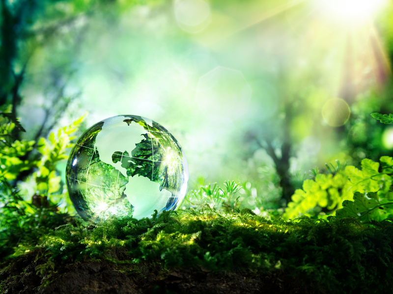 glass planet in a forest with sunshine - Usa map